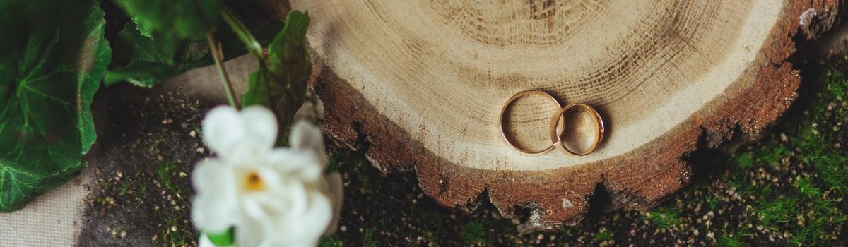 Z jakiego drewna wykonuje się obrączki ślubne?